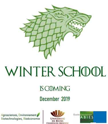 Affiche Winter School (82 Ko)