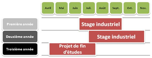 Périodes de stages