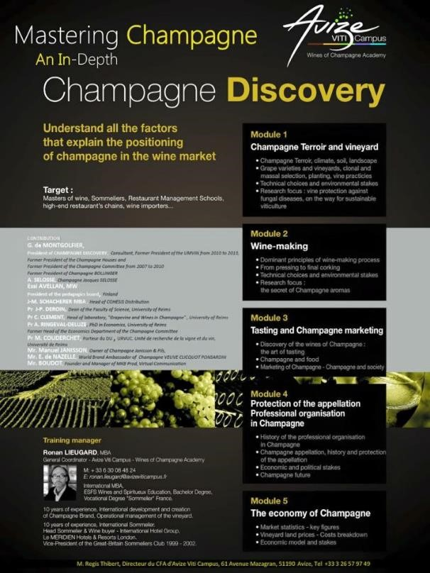 Mastering Champagne. An In-Depth Champagne Discovery
