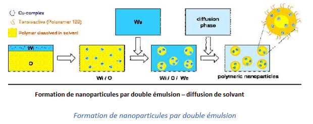 Formation de nanoparticules par double émulsion